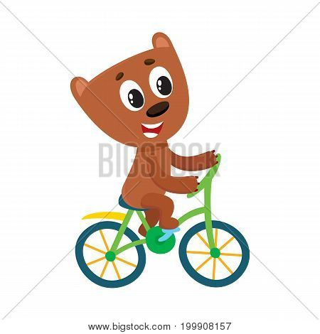 Cute little bear character riding bicycle, cycling, cartoon vector illustration isolated on white background. Little baby bear animal character riding bike, bicycle, cycling happily