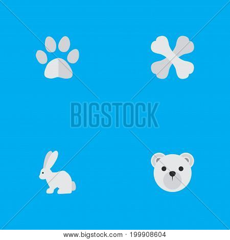 Elements Hare, Panda , Skeleton Synonyms Panda, Food And Rabbit.  Vector Illustration Set Of Simple Wild Icons.