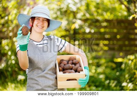 Young woman farmer in hat with box of potatoes in summer of