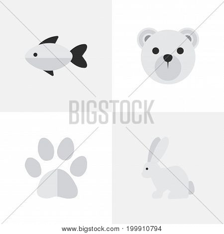 Elements Foot , Hare, Panda Synonyms Seafood, Bear And Perch.  Vector Illustration Set Of Simple Zoo Icons.