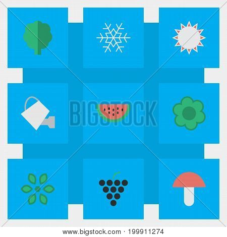 Elements Melon, Wine, Wood And Other Synonyms Can, Snow And Flake.  Vector Illustration Set Of Simple Garden Icons.
