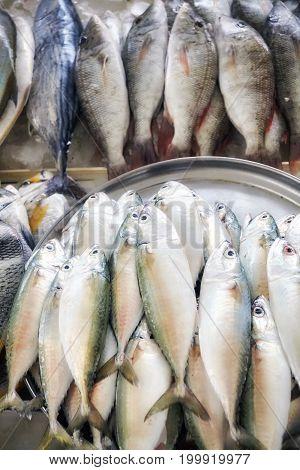 Fresh Sea Fish At The Fish Market