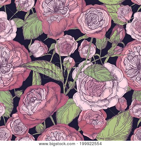 Beautiful detailed pion-shaped rose seamless pattern. Hand drawn blossom flowers and leaves. Colorful vintage vector illustration