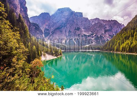 Green expanse of water reflects the surrounding mountains and forest. Magnificent lake Lago di Braies. South Tyrol, Italy. The concept of walking and eco-tourism