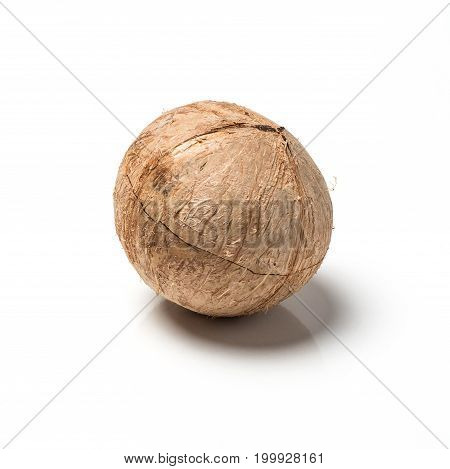 Asian coconut empty shell close up studio photography isolated.