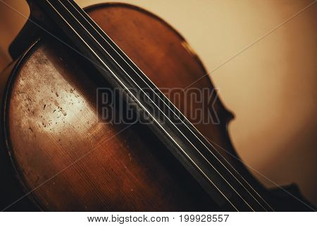 Details Of An Old Cello