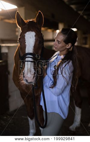 Female vet examining brown horse at stable