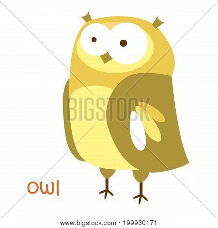 Owl isolated. Drawing owl for a child