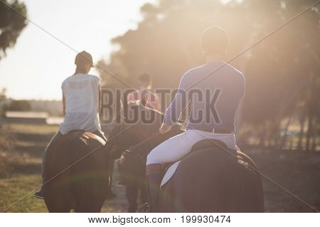 Rear view of trainer training women in riding horses at barn