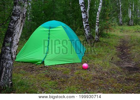 Green camping tent in birch forest. Vacation in the woods.