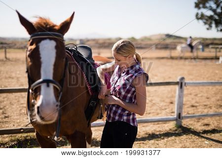 Young woman fastening saddle on horse while standing on field during sunny day