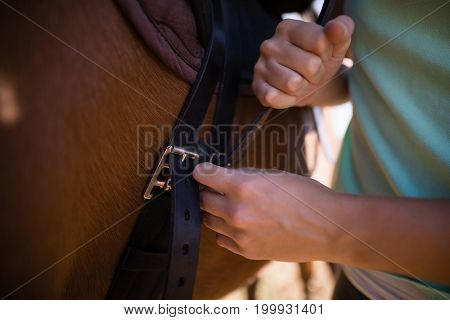 Mid section of female jockey fastening saddle on horse