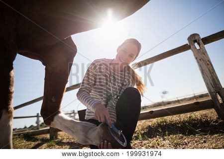 Smiling female vet attaching shoe on horse foot while crouching on field