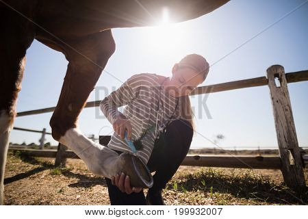 Young female vet attaching shoe on horse foot while crouching on field