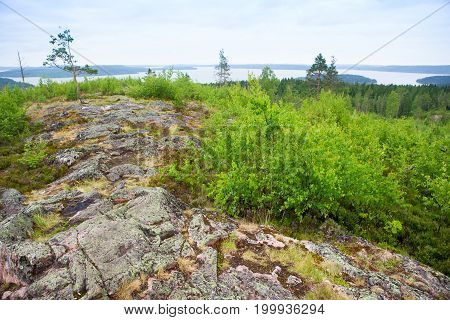Plain With Soft Green Hills Covered In Grass With Sporadic Trees And Granite Boulders, On A Foggy Su