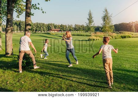 grandparents having fun together with grandchildren on meadow