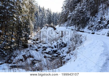 Wintery snowy path with trees and small river in Stubai Alps mountains Austria