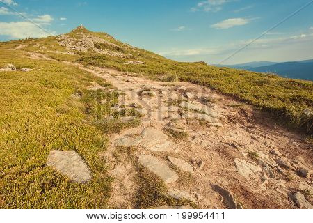 Dirt road to the top of green mountain. Nature landscape with rural way in grass. Beautiful scenery in the Carpathian Mountains.