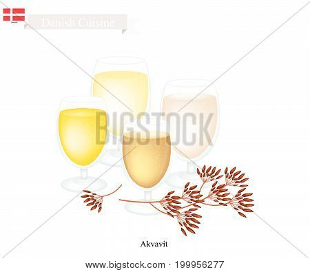 Danish Cuisine, Akvavit or Aquavit or Traditional Liquor Aromatic Flavourings with Caraway or Cumin Seed, Lemon or Orange peel, Cardamom, Aniseed and Fennel. One of Most Famous Drink in Denmark.