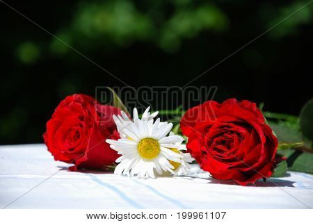 Summer flowers red roses and daisies on a table outdoors