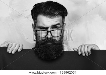 Bearded man long beard. Brutal caucasian unshaven squinting hipster with glasses and moustache holding blue paper sheet on colorful studio background