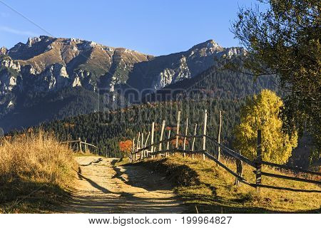 Stunning colorful autumn alpine landscape with green fields and high mountains, Bran, Transylvania, Romania, Europe