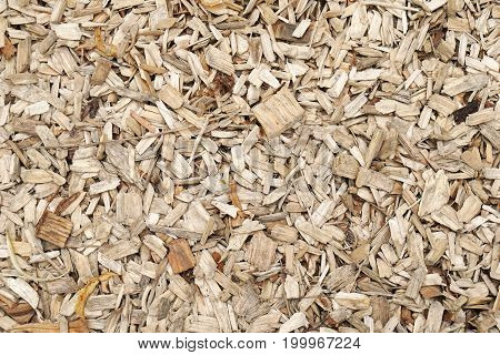 wood shavings or wood chippings or sawdust background