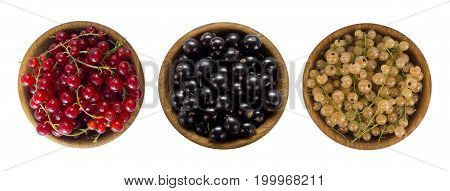 Set of different color currants isolated on white background cut out. White red and black currant in a wooden bowl with copy space for text. Top view. Red currant in a wooden bowl with copy space for text.
