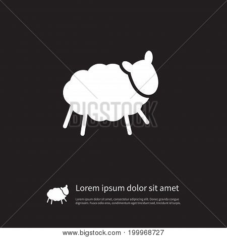 Sheep Vector Element Can Be Used For Sheep, Lamb, Ewe Design Concept.  Isolated Ewe Icon.