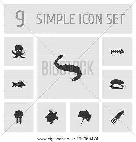Collection Of Calamary, Medusa, Devilfish And Other Elements.  Set Of 9 Sea Icons Set.