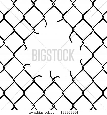 Mesh Netting Torn. Rabitz  With Hole. Mesh Fence Ripped Background