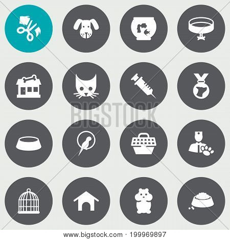 Collection Of Scissor, Cat , Neckband Elements.  Set Of 16 Mammal Icons Set.