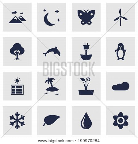 Collection Of Moth, Bloom, Isle Beach And Other Elements.  Set Of 16 Ecology Icons Set.