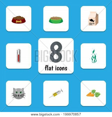 Flat Icon Animal Set Of Rabbit Meal, Temperature Measurement, Kitty And Other Vector Objects