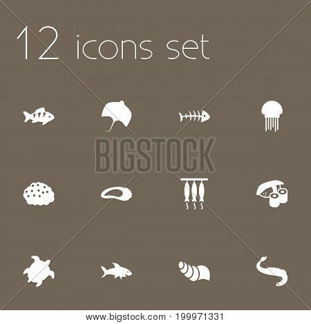 Collection Of Stingray, Medusa, Shark And Other Elements.  Set Of 12 Food Icons Set.