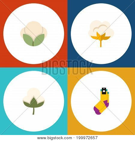 Flat Icon Cotton Set Of Flower, Cotton, Hosiery And Other Vector Objects
