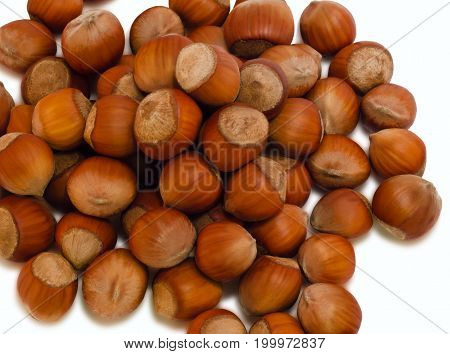 A lot of scattered brown nuts on a white background