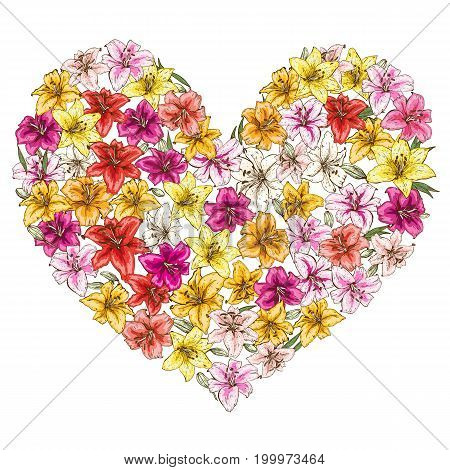 Heart of colorful lilies isolated on white background. Vector