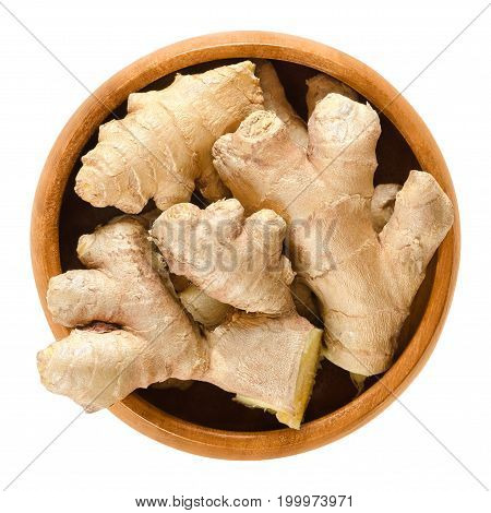 Ginger roots in wooden bowl. Fresh rhizomes of Zingiber officinale, used as a spice or a folk medicine. Isolated macro food photo close up from above on white background.
