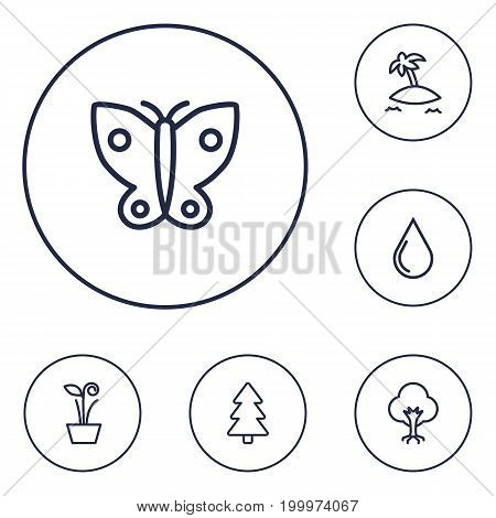 Collection Of Water Drop, Plant, Island Elements.  Set Of 6 Bio Outline Icons Set.