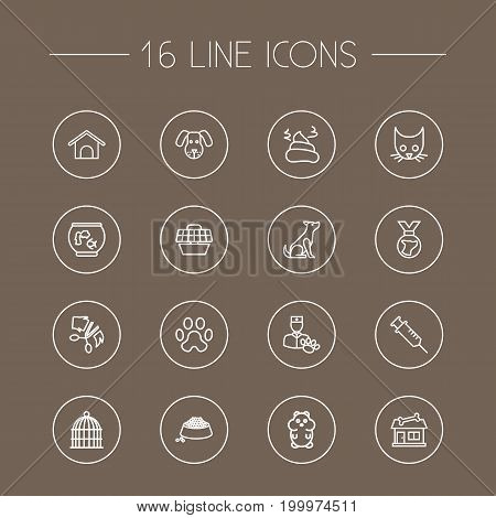 Collection Of Bird Prison, Dog, Vaccination And Other Elements.  Set Of 16 Mammal Outline Icons Set.
