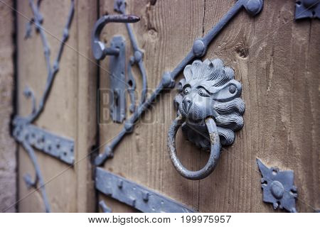 old rustic wooden door with iron lion head