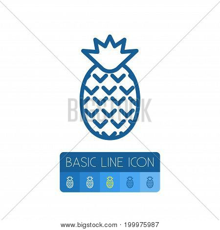 Dessert Vector Element Can Be Used For Ananas, Pineapple, Dessert Design Concept.  Isolated Pineapple Outline.