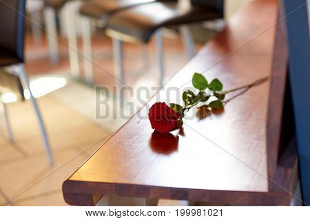 funeral and mourning concept - red roses on bench in church