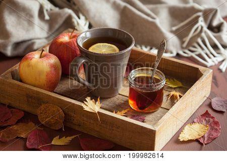 hot lemon honey tea warming drink scarf cozy autumn leaves