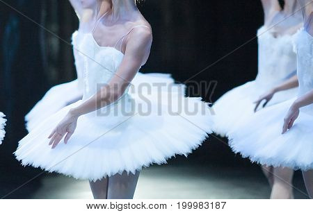 beauty, ballet, anatomy concept. delicate lines of sillouette of ballerinas, dressed in costumes of dazzling swans, are contrasted with the dark background of the wings