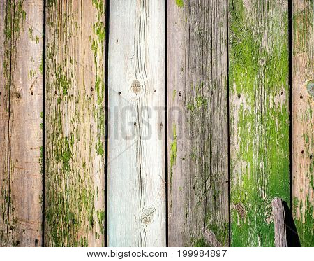 old wood fence board plank painted texture vintage background  with knots