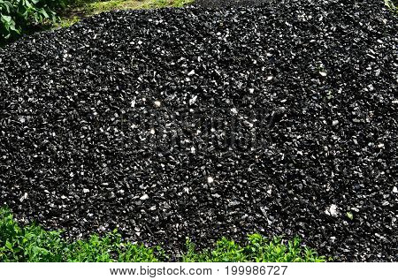 A heap of coal of anthracite against a background of green vegetation.