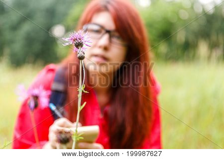 Photo of thistle on background of woman botanist in woods by day