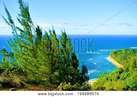 Kee Beach taken from the Kalalau Hiking Trail at the Napali Coast in Kauai, HI